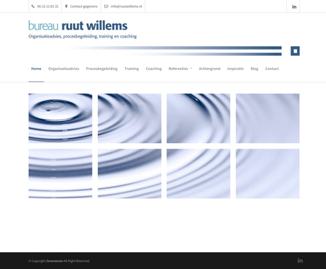 Website Ruut Willems